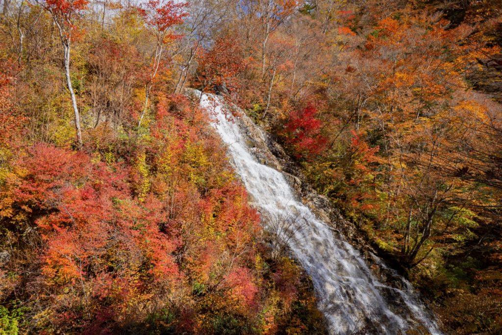 Shakunage Water Fall